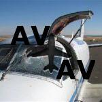 В 2009 году в США зафиксировано свыше 10.000 случаев столкновения самолетов с птицами.